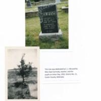 Tree Dedicated to C. L. McLeod